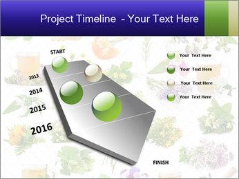0000075154 PowerPoint Templates - Slide 26