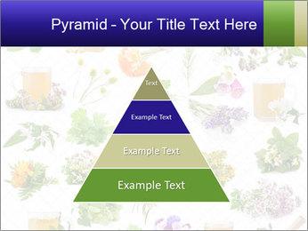 0000075154 PowerPoint Templates - Slide 30