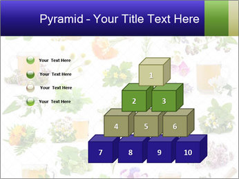 0000075154 PowerPoint Templates - Slide 31