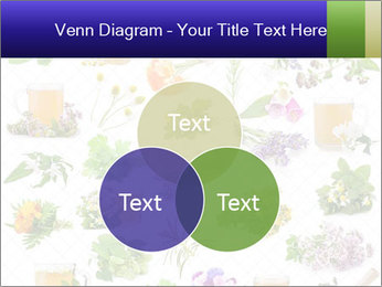 0000075154 PowerPoint Templates - Slide 33