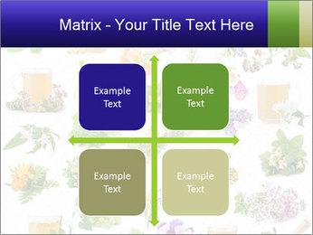 0000075154 PowerPoint Templates - Slide 37