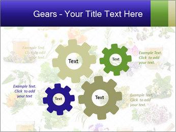 0000075154 PowerPoint Templates - Slide 47