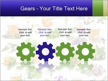 0000075154 PowerPoint Templates - Slide 48