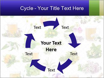 0000075154 PowerPoint Templates - Slide 62
