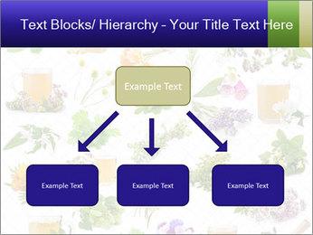 0000075154 PowerPoint Templates - Slide 69