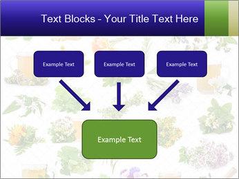 0000075154 PowerPoint Templates - Slide 70