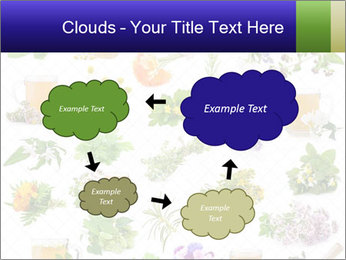 0000075154 PowerPoint Templates - Slide 72