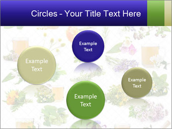 0000075154 PowerPoint Templates - Slide 77
