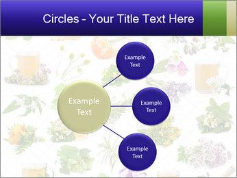 0000075154 PowerPoint Templates - Slide 79