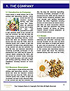 0000075154 Word Templates - Page 3