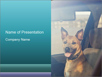 0000075156 PowerPoint Template