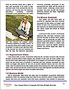 0000075160 Word Template - Page 4