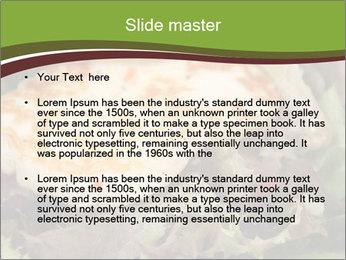 0000075164 PowerPoint Template - Slide 2