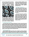 0000075168 Word Templates - Page 4