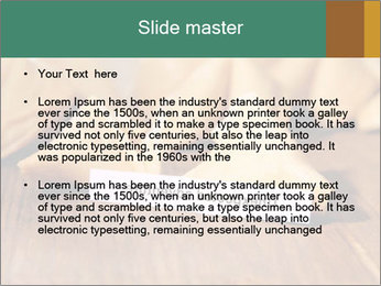 0000075171 PowerPoint Template - Slide 2
