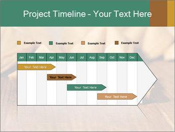 0000075171 PowerPoint Template - Slide 25