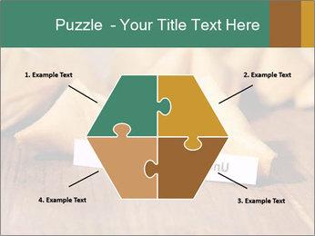 0000075171 PowerPoint Template - Slide 40