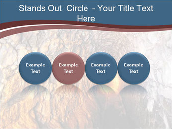0000075174 PowerPoint Templates - Slide 76