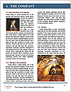 0000075174 Word Template - Page 3
