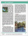 0000075179 Word Template - Page 3