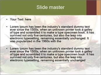 0000075181 PowerPoint Template - Slide 2