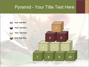 0000075181 PowerPoint Template - Slide 31