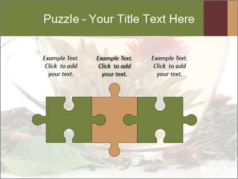 0000075181 PowerPoint Template - Slide 42