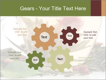 0000075181 PowerPoint Template - Slide 47