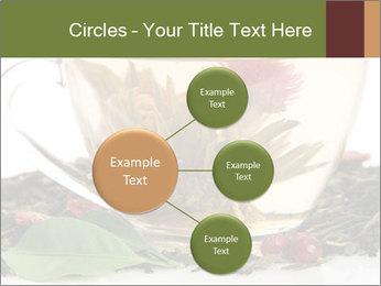 0000075181 PowerPoint Template - Slide 79