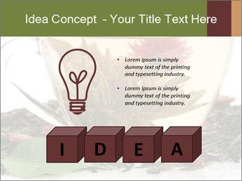 0000075181 PowerPoint Template - Slide 80