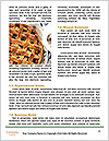 0000075185 Word Template - Page 4