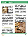 0000075187 Word Templates - Page 3