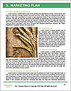 0000075187 Word Templates - Page 8