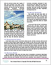 0000075201 Word Templates - Page 4