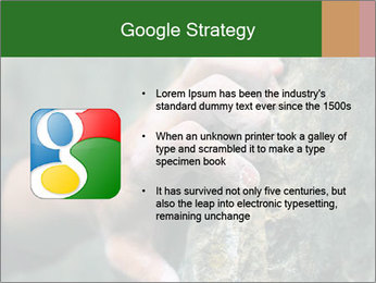 0000075203 PowerPoint Templates - Slide 10