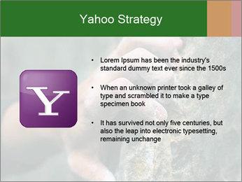 0000075203 PowerPoint Templates - Slide 11