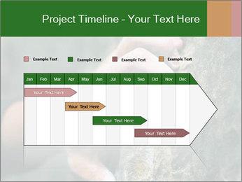 0000075203 PowerPoint Templates - Slide 25