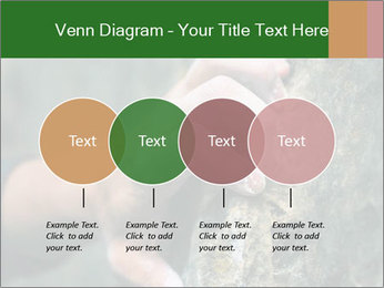 0000075203 PowerPoint Templates - Slide 32