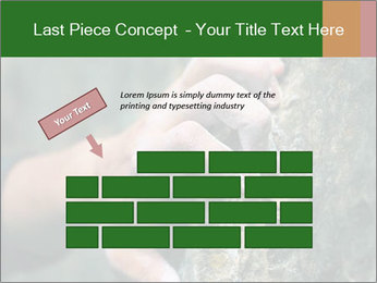 0000075203 PowerPoint Template - Slide 46