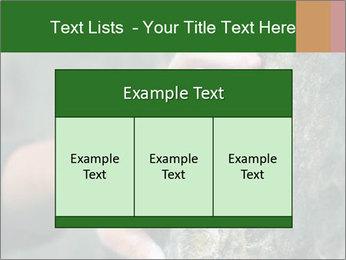 0000075203 PowerPoint Templates - Slide 59