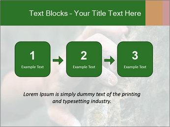 0000075203 PowerPoint Templates - Slide 71
