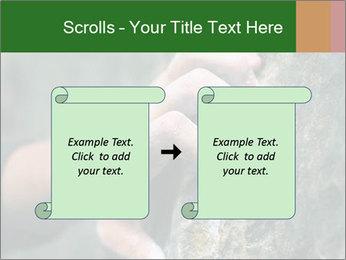 0000075203 PowerPoint Templates - Slide 74