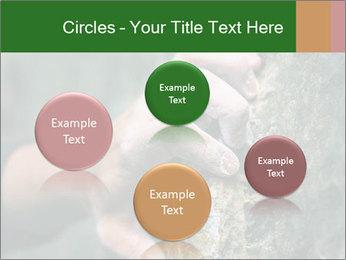 0000075203 PowerPoint Templates - Slide 77