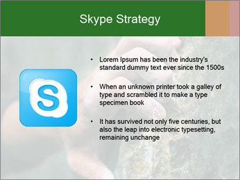 0000075203 PowerPoint Template - Slide 8