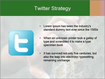 0000075203 PowerPoint Templates - Slide 9