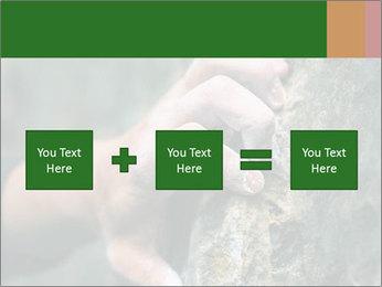 0000075203 PowerPoint Templates - Slide 95