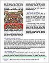 0000075205 Word Template - Page 4