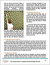 0000075212 Word Template - Page 4