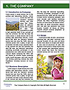 0000075216 Word Template - Page 3