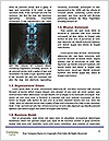 0000075217 Word Template - Page 4
